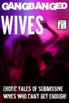 Gangbanged Wives: Erotic Stories of Submissive Wives who Can't Get Enough! - N.T. Morley, Ilana Bell, Skye Black, Eric Emerson, Elizabeth Colvin, Alan Carter, Tina Taylor, Derek McDaniel, Sarah Sands