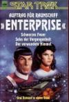 Auftrag für Raumschiff Enterprise: Schwarzes Feuer / Sohn der Vergangenheit / Der verwundete Himmel - Sonni Cooper, Ann C. Crispin, Diane Duane