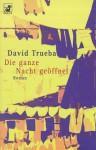 Die ganze Nacht geöffnet - David Trueba, Peter Schwaar