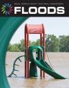 Floods - Graeme Davis