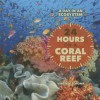 24 Hours on a Coral Reef - Virginia Schomp