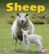 Sheep - Robin Nelson