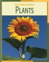 Plants - Elizabeth Silverthorne