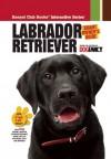 Labrador Retriever - Dog Fancy Magazine