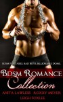 BDSM Romance Collection (BDSM Romance. Billionaire Doms. BDSM Fantasies. Bad Boys.) - Anita Lawless, Roxxy Meyer, Leigh Foxlee
