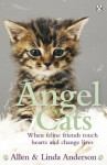 Angel Cats: When feline friends touch hearts and change lives - Allen Anderson, Linda Anderson