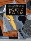 The Cambridge Introduction to Poetic Form (Cambridge Introductions to Literature) - Michael D. Hurley, Michael O'Neill