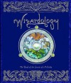 Wizardology: The Book of the Secrets of Merlin - Dugald A. Steer