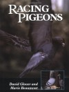 Racing Pigeons - David Glover, Marie Beaumont