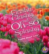 Flashy, Clashy, and Oh-So Splashy: Poems about Color - Laura Purdie Salas, Laura Purdie Sales