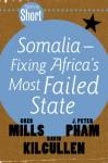Somalia: Fixing Africa's Most Failed State (Tafelberg Short) - Greg Mills, John Peter Pham, David Kilcullen