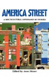 America Street: A Multicultural Anthology of Stories - Anne Mazer, Duane Big Eagle, Robert Cormier, Toshio Mori