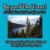 Beyond the Trees! a Kid's Guide to Lake Tahoe, USA - Penelope Dyan, John D. Weigand