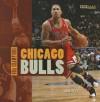 Chicago Bulls (NBA Champions) - Aaron Frisch