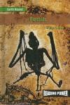 Fossils - Holly Cefrey
