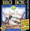 Big Box Of Backyard Animals (Big Box Of Board Books Series) - Carolyn B. Otto, Kathleen Weidner Zoehfeld
