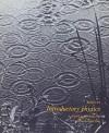 Introductory Physics: A Model Approach - Robert Karplus, Fernand Brunschwig