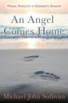 An Angel Comes Home - Michael John Sullivan
