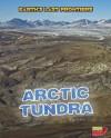 Arctic Tundra - Ellen Labrecque