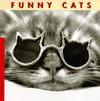 Funny Cats - Jean-Claude Suarès