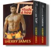 STUDS 4 HIRE (Studs 4 Hire Boxed Set) - Sherry James