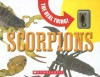 Scorpions - Paige Krul Araujo, Mary Packard, Carol Schwartz, M. Jan Ove Rein