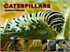 Caterpillars - Marilyn Singer