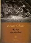Wybór opowiadań - Bruno Schulz