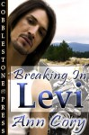 Breaking in Levi - Ann Cory