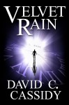Velvet Rain - David C. Cassidy