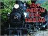 Great American Scenic Railroads - Michael Swift