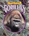 Gorillas - Meish Goldish