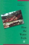 How the Water Feels: Stories - Paul Eggers