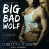 Big Bad Wolf (The Others, #2) - Christine Warren, Kate Reading