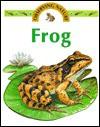 Frog - Stephen Savage