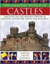 The Amazing World of Castles: Discover the Fascinating History of Medieval Adventure, Battle and Romance - Barbara Taylor, Brian Davison