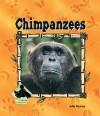 Chimpanzees - Julie Murray