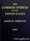 The Common Spiders of the United States - James Henry Emerton