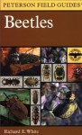 Beetles: A Field Guide to the Beetles of North America - Richard E. White, Roger Tory Peterson