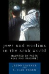 Jews and Muslims in the Arab World: Haunted by Pasts Real and Imagined - Jacob Lassner, S. Ilan Troen
