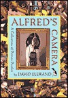 Alfred's Camera: A Collection of Picture Puzzles - David Ellwand