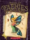 Book of Faeries - Heather Dakota