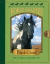 Horse Diaries #8: Black Cloud - Patricia Hermes, Astrid Sheckels