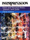 Perkins Commentary: First and Second Peter, James, and Jude (Interpretation, a Bible Commentary for Teaching and Preaching) - Pheme Perkins