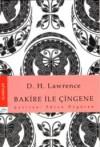 La Vierge Et Le Gitan: Roman - D.H. Lawrence