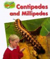 Centipedes And Millipedes - Theresa Greenaway, Dick Twinney, Stefan Chabluk, Chris Fairclough