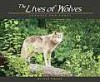 The Lives of Wolves, Coyotes and Foxes - Stan Tekiela