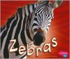 Zebras (African Animals) - Catherine Ipcizade, Gail Saunders-Smith