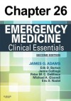 Eye Emergencies: Chapter 26 of Emergency Medicine - James Adams