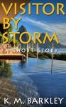 Visitor By Storm: A Short Story - K. M. Barkley